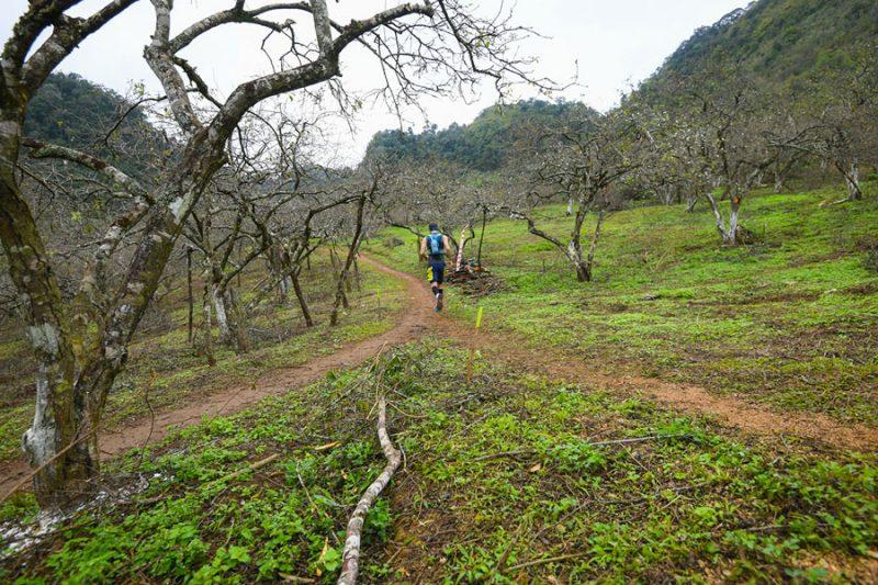 su-kien-marathon-moc-chau-vietnam-trail-marathon-2019-4