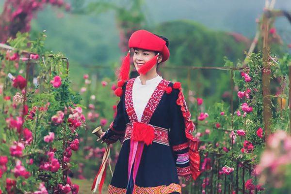 su-kien-le-hoi-hoa-hong-sapa-2020-hap-dan-du-khach-8